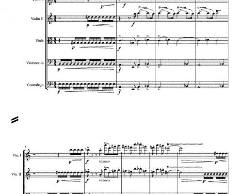 Conciertino | Para flauta y orquesta de cuerdas